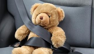 Pluszowy miś w samochodzie